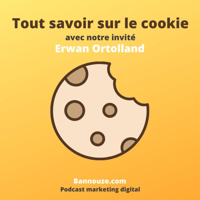 tout savoir sur les cookies