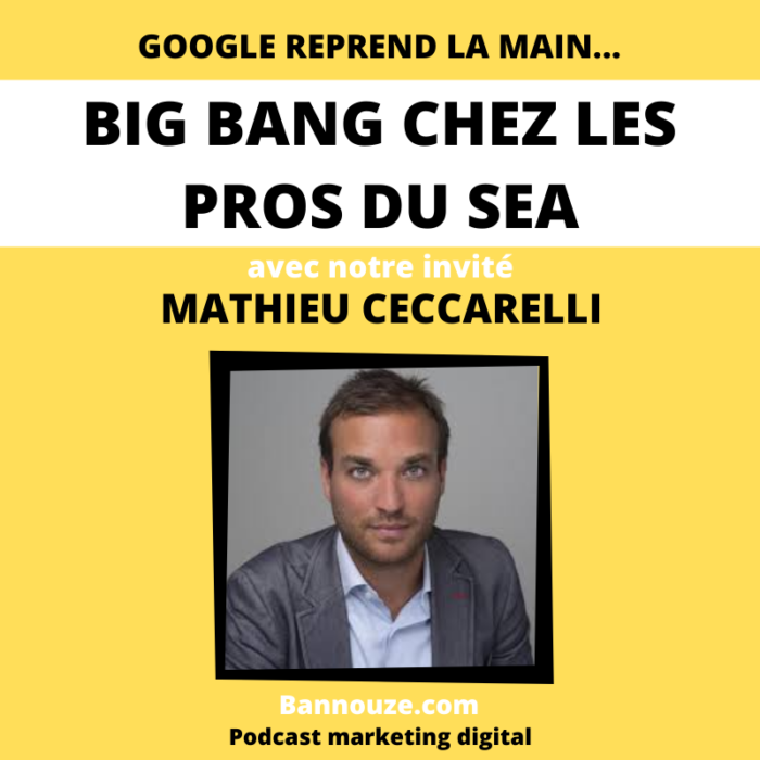 Search > Google reprend la main sur le SEA